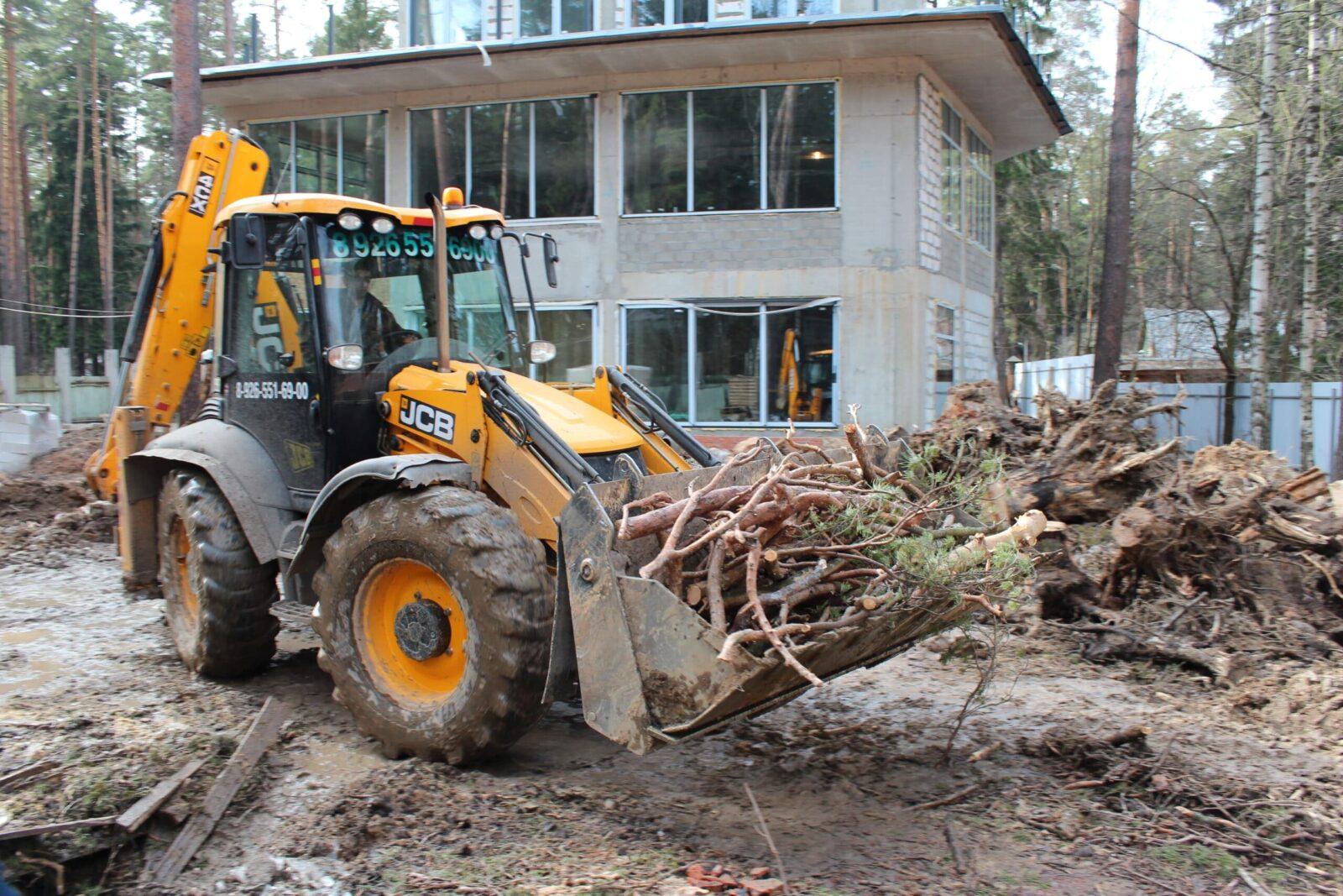 Изображение Расчистка участка от деревьев и кустарников