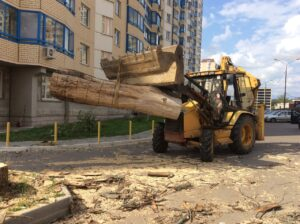Vyvoz porubochnyh ostatkov 300x224 - Вывоз спиленных деревьев с участка
