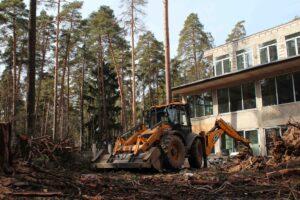 img 4600 1 300x200 - Расчистка участка от деревьев и кустарников