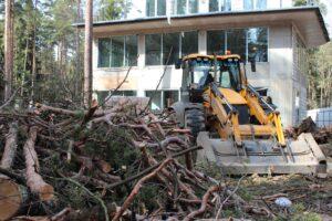 img 4604 1 300x200 - Расчистка участка от деревьев и кустарников
