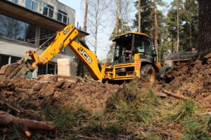 img 4639 1 300x200 - Расчистка участка от деревьев и кустарников