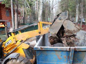 img 4697 300x224 - Вывоз спиленных деревьев с участка