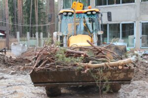 img 4708 1 300x200 - Расчистка участка от деревьев и кустарников