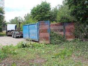 img 7876 300x224 - Вывоз спиленных деревьев с участка