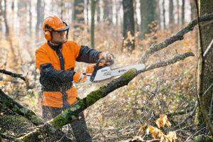 spil derevev 300x200 - Уход за деревьями в Москве и Подмосковье