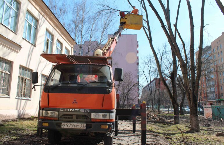 Изображение Валка деревьев в городе и городских условиях